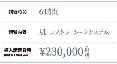 講習時間:6時間、230,000円(税別)